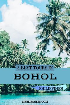 Bohol is the tenth largest island in the Philippines, so there is a lot to explore. This is why many people consider booking a Bohol tour. As like just about anywhere that you travel to, there are some activities that you can easily do alone, and others t Siargao, Palawan, Voyage Philippines, Bohol Philippines, Philippines Travel, Cool Places To Visit, Places To Travel, Travel Destinations, Bucket List Destinations