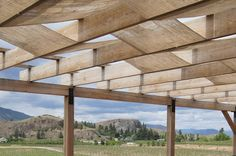 Great way to add shade to deck! Wineries, Wine Drinks, Montana, Road Trip, Deck, Lounge, Canada, Backyard, Shades