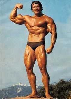 Arnold Schwarzenegger Body Top 100 Fittest Men of All Time Inspire Health and Fitness Greatness