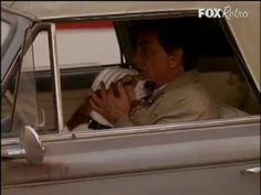 Columbo - Basset Hound Owners Club