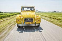 1000 images about auto on pinterest alfa romeo porsche 356 and porsche. Black Bedroom Furniture Sets. Home Design Ideas