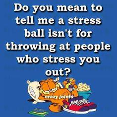 garfield Google+ Garfield Quotes, Garfield Cartoon, Garfield And Odie, Garfield Comics, Good Times Quotes, Snoopy Quotes, Different Quotes, Funny Cartoons, Funny Signs