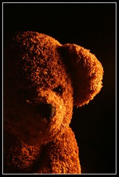 Have you Hugged a TEDDY BEAR today lol mr x