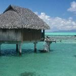 South Pacific, Rangiroa or Bora Bora Need A Vacation, Vacation Places, Dream Vacations, Places To Travel, Places To See, Amazing Places On Earth, Beautiful Places To Visit, Amazing Destinations, Holiday Destinations