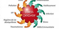 Qu'est-ce que le stress oxydant?