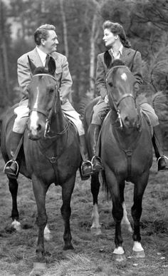 Horses not speaking ...
