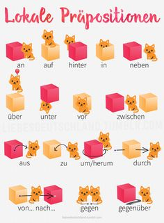 I got this nice pics from my tandem partner. She's kind of obsessed with her cats and she found some cute german resources to better understand locative prepositions. Study German, Learn German, German English, Learn French, German Grammar, German Words, German Language Learning, Language Study, Spanish Language