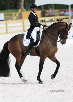 Tuny Page owning the National Show Grand Prix with a 68.777% riding Wild One. (Photo: Mary Phelps - phelpsphotos.com)