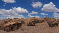 Petrified Forest National Park, Arizona    Best known for globally significant Late Triassic fossils, the park attracts many researchers. Geologists study the multi-hued Chinle Formation. Archeologists research over 13,000 years of history. Biologists explore one of the best remnants of native Arizona grassland. Air quality is an ongoing study in the park. Discover your own passion at Petrified Forest!