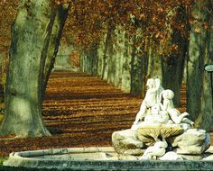 The royal gardens of aranjuez Turismo Madrid Places In Spain, Places To See, Bourbon, Madrid Metro, Spanish Garden, Empire, Before The Fall, Spanish Architecture, Royal Garden