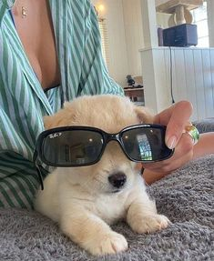 Super Cute Puppies, Baby Animals Super Cute, Cute Dogs And Puppies, Cute Little Animals, Cute Funny Animals, Doggies, Baby Animals Pictures, Cute Animal Pictures, Dog Pictures