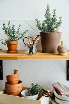 Digging in the dirt is one of the simplest pleasures, so don't clutter it up with a lot of stuff. The thoughtful design Barebones uses in their gardening (and camping and outdoors) equipment keeps the minimalist approach sacred with multi-purpose use and beautiful aesthetics. They've curated two kits for two type of gardeners. So which kit is right for your gardening style?