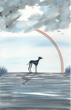 Whippet greyhound dog ORIGINAL Watercolour painting By Bridgette lee