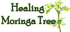 Organic Moringa piece) kit All Natural Skin Care System Natural Remedies For Arthritis, Natural Cures, Natural Healing, Tree Information, Miracle Tree, Moringa Leaves, Moringa Oil, All Natural Skin Care, Moringa Oleifera