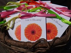 12  Orange Gerber Daisy Design with Wildflower Seeds by SuLuGifts, $21.00
