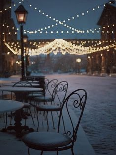 festoon lights - Les Dames D'Abord