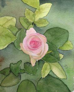 #Rosierblanc #PierredeRonsard #Rosierbicolore #Parfum #Rose #Eden #Edenclimber #Romantique #Deco #Jardin #Bouquet Plantation, Bouquet, Deco, Parfum Rose, Antiques, Flowers, Plants, Gardens, Water Colors
