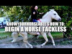 How To: Begin a Horse Tackless - YouTube