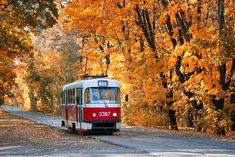 Light Rail, Public Transport, Transportation, Nature, Trains, The Great Outdoors, Mother Nature, Scenery, Natural