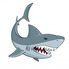 Shark Images, Shark Pictures, Cute Shark, Great White Shark, Marcelo Tattoo, Hai Tattoos, Shark Drawing, Drawings Of Sharks, Shark Art