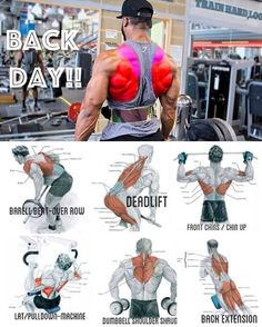Fitness workouts back bodybuilding 68 Ideas Fitness Workouts, Weight Training Workouts, Fun Workouts, Fitness Motivation, Back Workouts For Men, Good Chest Workouts, Yoga Fitness, Video Fitness, Fitness Tips