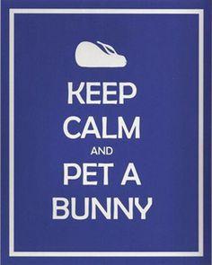 Keep Calm  and Pet A Bunny ~ Italian Girl in Georgia {Originally from the House Rabbit Society}