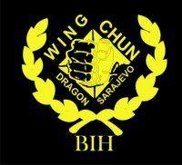 logo wing chun Dragon SA      right here at Fredericksburg Martial Arts School http://www.shaolinkungfucenter.com