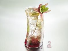 Wild Hibiscus Mojito. From the book, Knack Bartending Basics: More ...