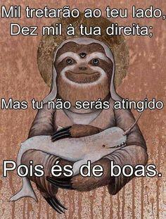 de boas #deboismo #deboista