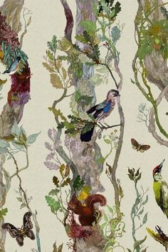 Birds & Beasts: 10 Animal Wallpapers that are Perfect for Grown-Up Spaces | Apartment Therapy: