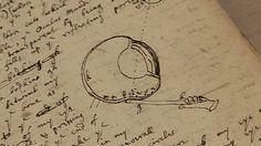 BBC News - Cambridge University puts Isaac Newton papers online