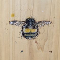 Bee#4, Fay Helfer