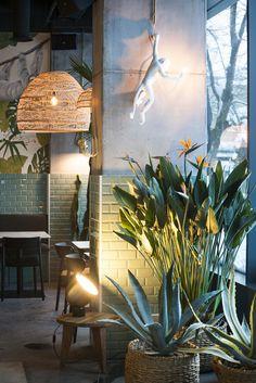 Gallery of Kane World Food Studio / Bogdan Ciocodeică - 19 Resto Vegan, Decoration Restaurant, Estilo Tropical, Industrial House, Industrial Bathroom, Industrial Wallpaper, Industrial Apartment, Industrial Office, Industrial Closet