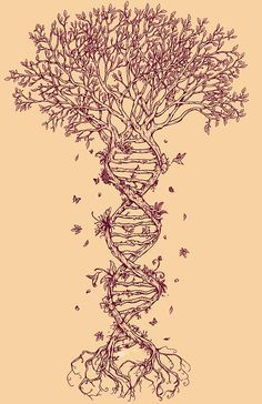 DNA tree of life tattoo