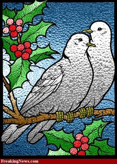Stained-Glass-Doves--34656
