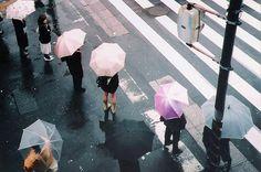 umbrellas in a row