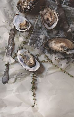 Raw Pacific oysters with sea salt and thyme Seattle Commercial Photographer Sean Blanton Food Styling, Food Photography Styling, Oyster Bar, In China, Fish And Seafood, Seafood Recipes, Food Art, Food Inspiration, Sushi