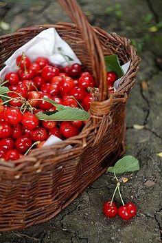 Basket of cherries ##cherries