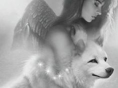 Wolf Spirit, Gifs, Game Of Thrones Characters, Fictional Characters, Google, Photos, Frases, Angels And Fairies, Beautiful Landscapes