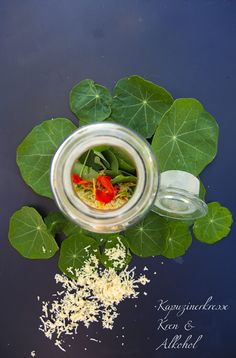 Homemade antibiotics --Natürliche Antibiotika selbstgemacht – Nasturtium is a natural antibiotic that anyone can use. You can find out how to make a tincture here. Summer Drink Recipes, Cocktail Recipes, Summer Drinks, Natural Cough Remedies, Herbal Remedies, Homemade Antibiotic, Healthy Life, Healthy Living, Flatter Stomach