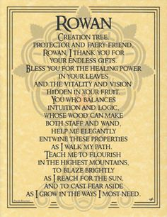 Rowan-Tree-Parchment-Book-of-Shadows-Page