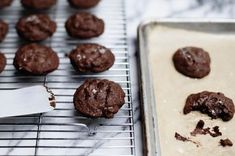 Salted Double-Chocolate Olive Oil Cookies Recipe on Food52, a recipe on Food52