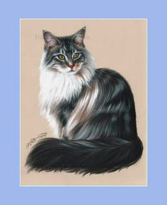 Maine Coon Cat Print Green Eyes by Irina Garmashova