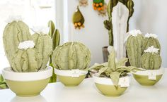 Movea design piante grasse in tessuto.