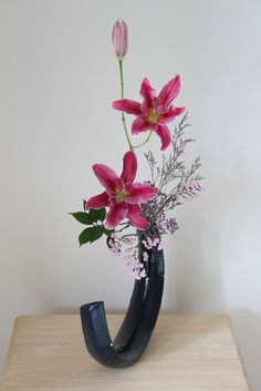 proflowers bonsai