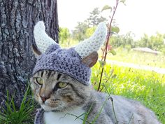 Latest Fashion Trend for Pets: Crocheted Hats!