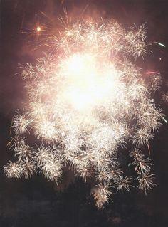 firework bouquet