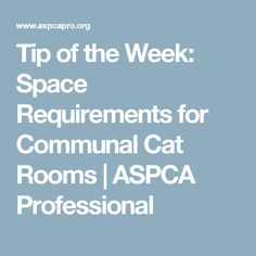 Tip of the Week: Space Requirements for Communal Cat Rooms | ASPCA Professional