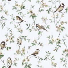 Nydelige små fugler.