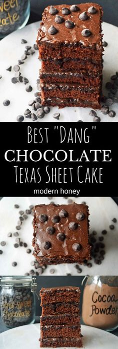 This Best Dang Chocolate Texas Sheet Cake recipe is famous around these parts for a reason. It's the easiest homemade chocolate cake recipe and a huge crowd pleaser.